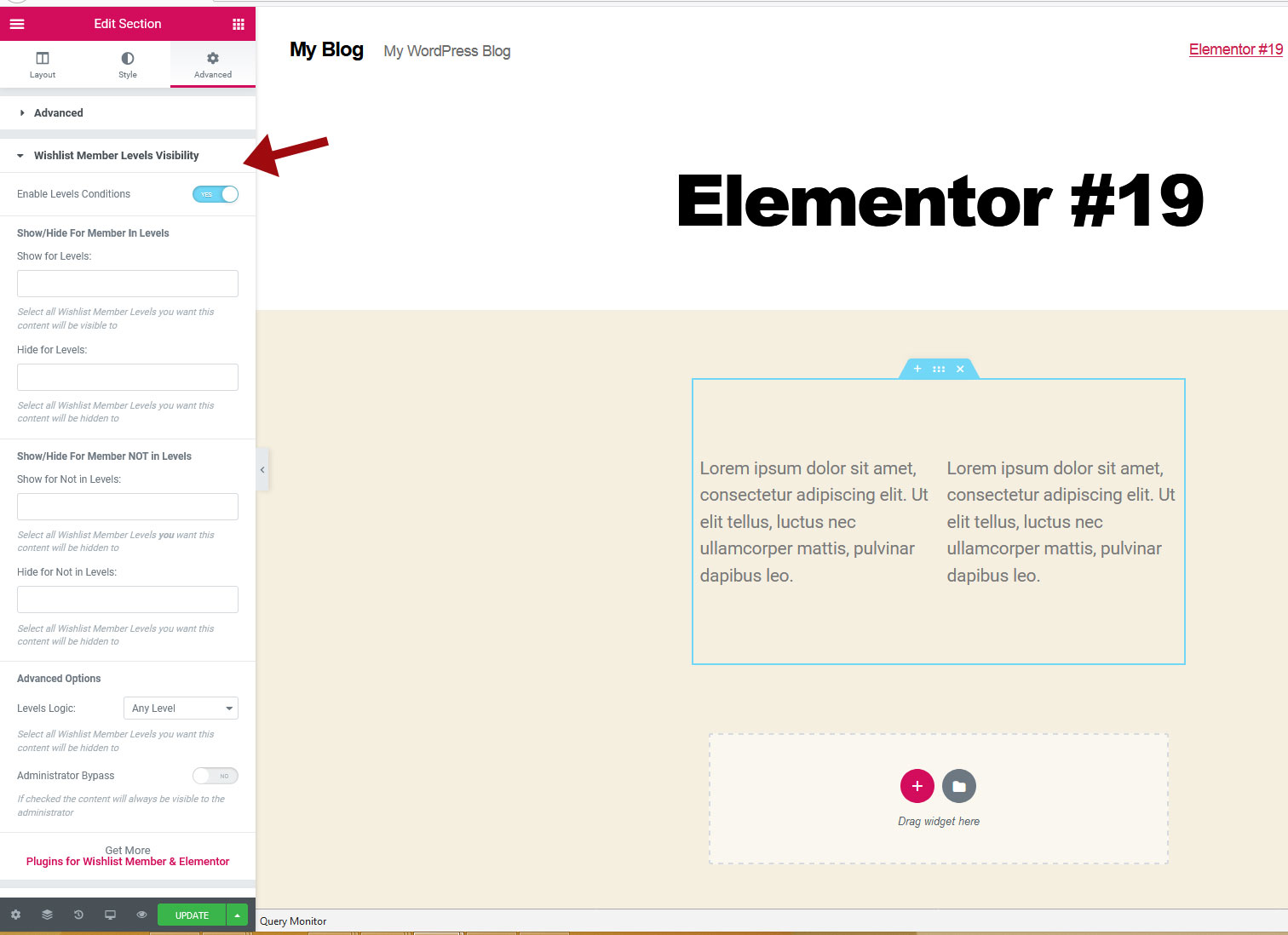 Dynamic-Visibility-for-Wishlist-Member-and-Elementor-settings