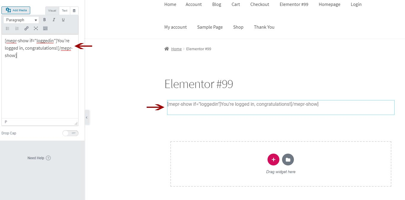 protect content via MemberPress when using Elementor page builder